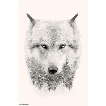 Wolf Trees плакат