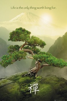 Zen плакат