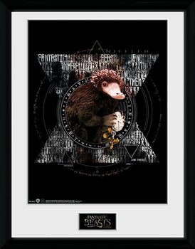 Fantastic Beasts - Niffler Circle Рамкиран плакат