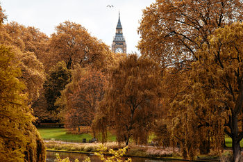 художествена фотография View of St James's Park Lake with Big Ben