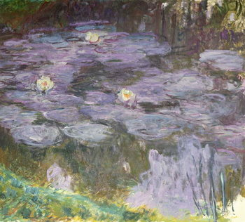 Waterlilies, 1917 Художествено Изкуство