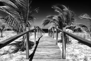 художествена фотография Wooden Pier on Tropical Beach