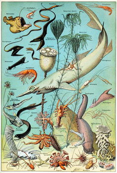 Illustration of a Deep sea underwater scene  c.1923 Художествено Изкуство