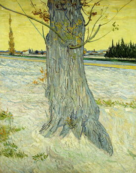 The Old Tree; Le Vieil If, 1888 Художествено Изкуство
