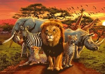 African kingdom 3D Poszter