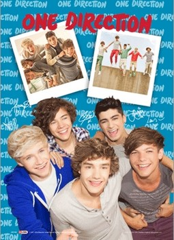 One Direction - polaroid 3D Poszter
