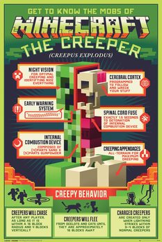 Poster Minecraft - Creepy Behaviour