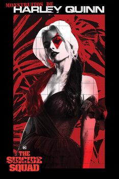 Poster The Suicide Squad - Monstruitos De Harley Quinn