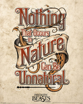 Les Animaux fantastiques - Fantastic Beasts Poster
