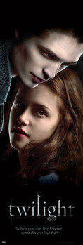 TWILIGHT - ed and bella Poster