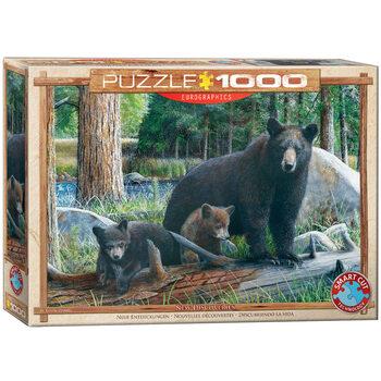 Puzzle Daniel - New Discoveries
