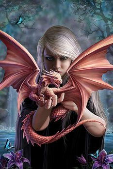 Anne Stokes - dragonkin - плакат (poster)