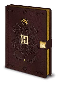 Harry Potter - Quidditch Anteckningsbok