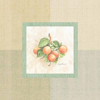 Apricots Inside Festmény reprodukció
