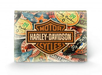 Cuadro de madera HARLEY DAVIDSON - logo