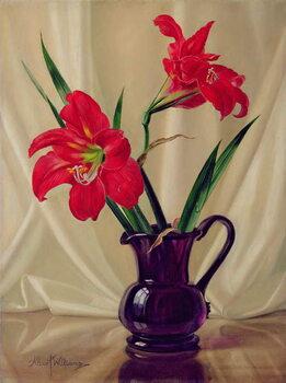 Amaryllis Lillies Kunstdruck