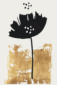 Illustration Black Poppy