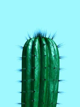 Ilustración cactus1