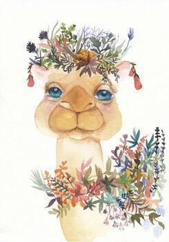 Ilustración Camel