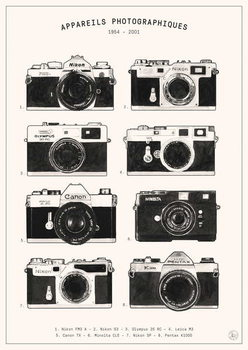 Cameras Reproduction de Tableau