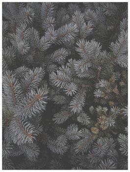 Ilustrácia christmas tree foilage
