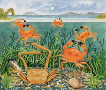 Crabs in the Ocean, 1997 Reproduction de Tableau