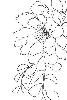 Ilustración Floral line art