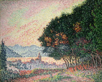 Forest near St. Tropez, 1902 Reproduction de Tableau