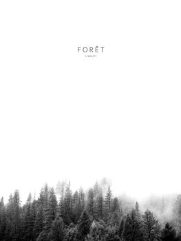 Illustration foret3