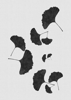 iIlustratie Ginkgo Leaf Black & White I