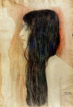Girl with Long Hair Kunsttryk