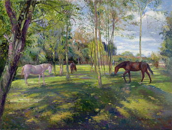 In the Rectory Paddock, 1993 Kunsttryk