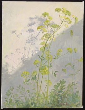 Lovage Against Diagonal Shadows, 1999 Reproduction de Tableau
