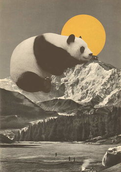 Panda's Nap into Mountains Kunstdruck