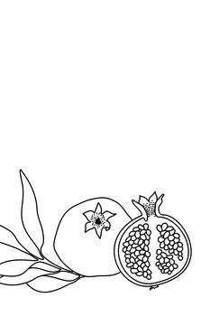 Ilustración Pomegranate line art