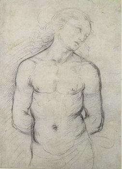 Saint Sebastian, 1499-1500 Kunsttryk