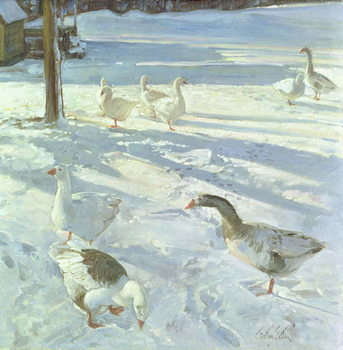 Snowfeeders, 1999 Kunstdruk