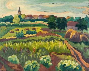 Suburban Gardens, 2005 Kunstdruk
