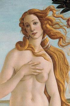The Birth of Venus (detail), c.1485 Reproduction de Tableau