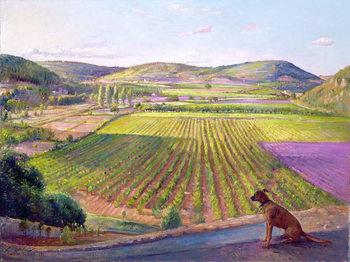 Reproducción de arte Watching from the Walls, Old Provence, 1993