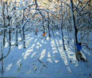 Reproducción de arte Winter woodland, near Newhaven, Derbyshire
