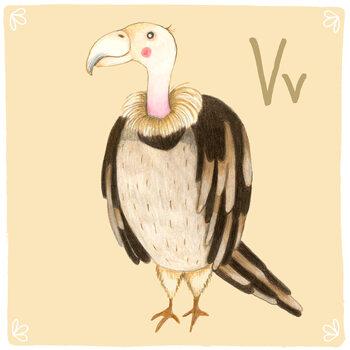 Ilustracja Alphabet - Vulture