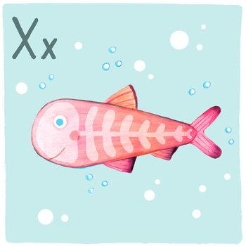 Ilustracja Alphabet - X-Ray-Fish