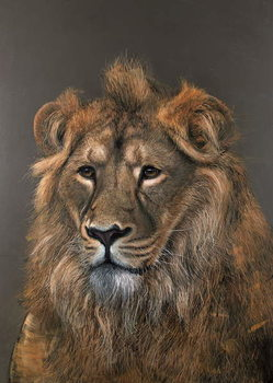 Asiatic Lion, 2015, Reproduction de Tableau