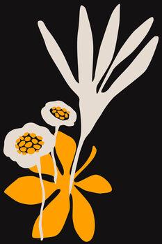 Illustration Blossom Beauty NERO