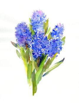 Stampa artistica Blue Hyacinth, 2014,