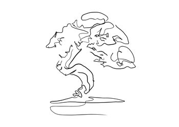 Illustration Bonsaj