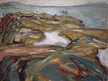 Stampa artistica Coastal Landscape