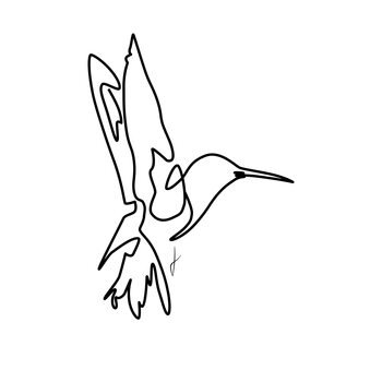 Illustration Colibri