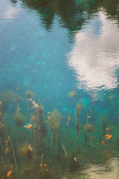 Kunstfotografi Cool natural gradient over the lake